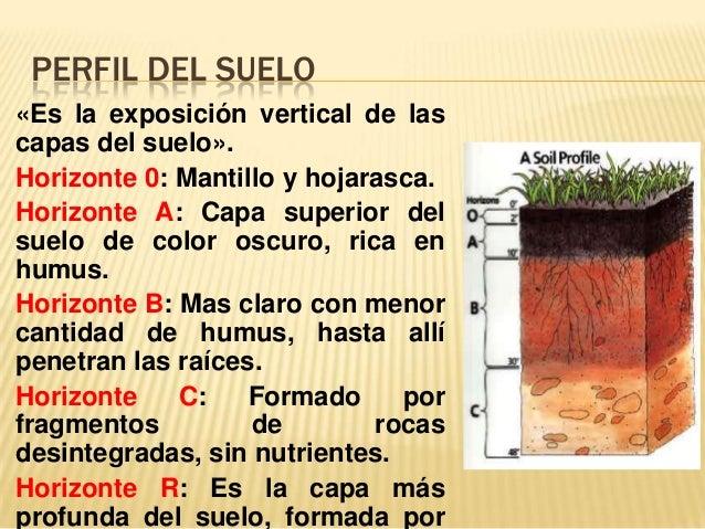 Los suelos for El suelo y sus capas