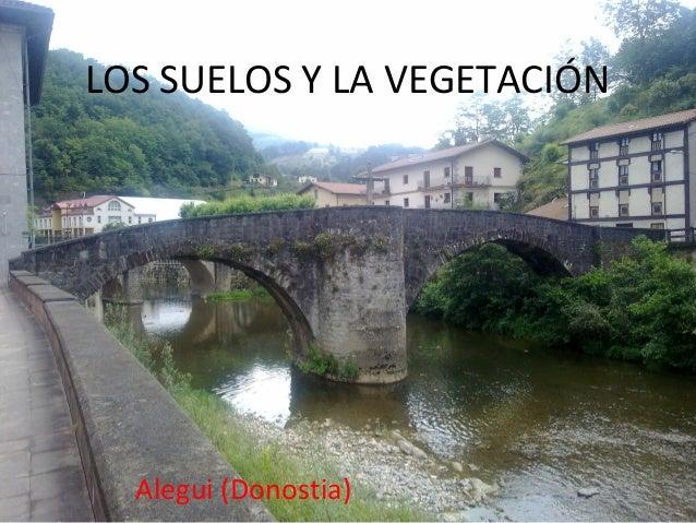 LOS SUELOS Y LA VEGETACIÓN  Alegui (Donostia)