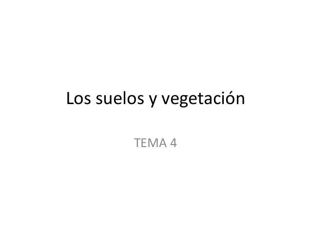 Los suelos y vegetación TEMA 4