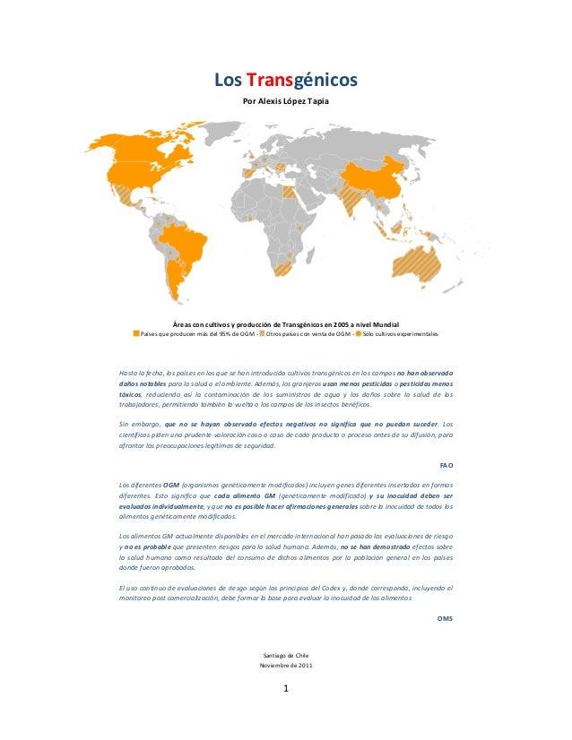 Los Transgénicos                                         Por Alexis López Tapia                  Áreas con cultivos y prod...