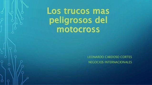 LEONARDO CARDOSO CORTES NEGOCIOS INTERNACIONALES