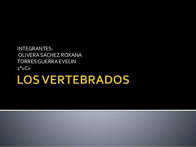 INTEGRANTES: OLIVERA SÁCHEZ ROXANA TORRES GUERRA EVELIN 1°»C»