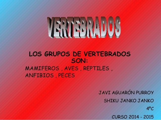 LOS GRUPOS DE VERTEBRADOS  SON:  MAMIFEROS , AVES , REPTILES ,  ANFIBIOS , PECES  JAVI AGUARÓN PURROY  SHIKU JANKO JANKO  ...