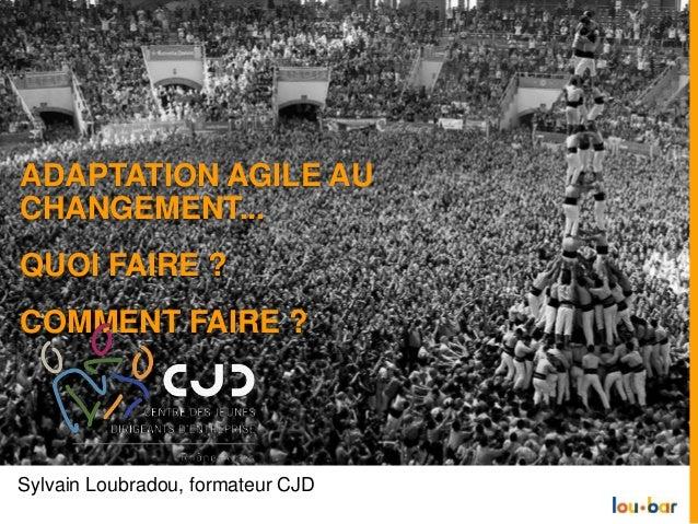 Sylvain Loubradou, formateur CJD ADAPTATION AGILE AU CHANGEMENT... QUOI FAIRE ? COMMENT FAIRE ?