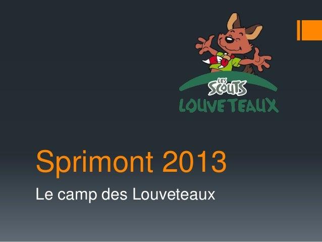 Sprimont 2013Le camp des Louveteaux