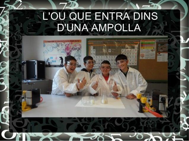 LOU QUE ENTRA DINS   DUNA AMPOLLA