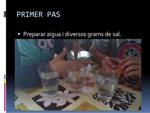 PRIMER PAS Preparar aigua i diversos grams de sal.