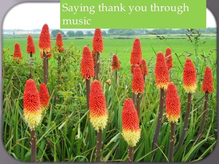 Saying thank you throughmusic