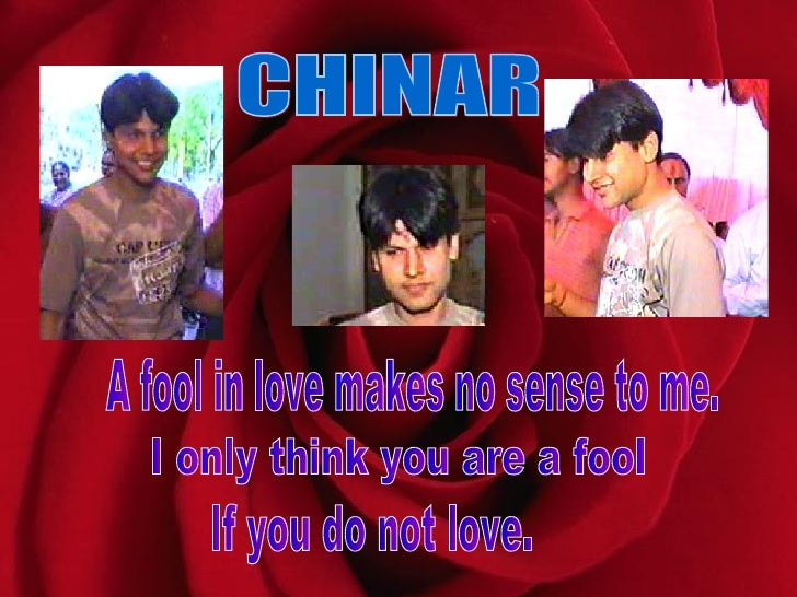 CHINAR A fool in love makes no sense to me.  I only think you are a fool  If you do not love.