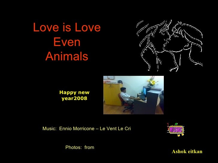 Love is Love Even Animals Ashok eitkan Photos:  from Music:  Ennio Morricone – Le Vent Le Cri Happy new year2008