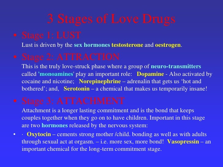 3 stages of love in relationships