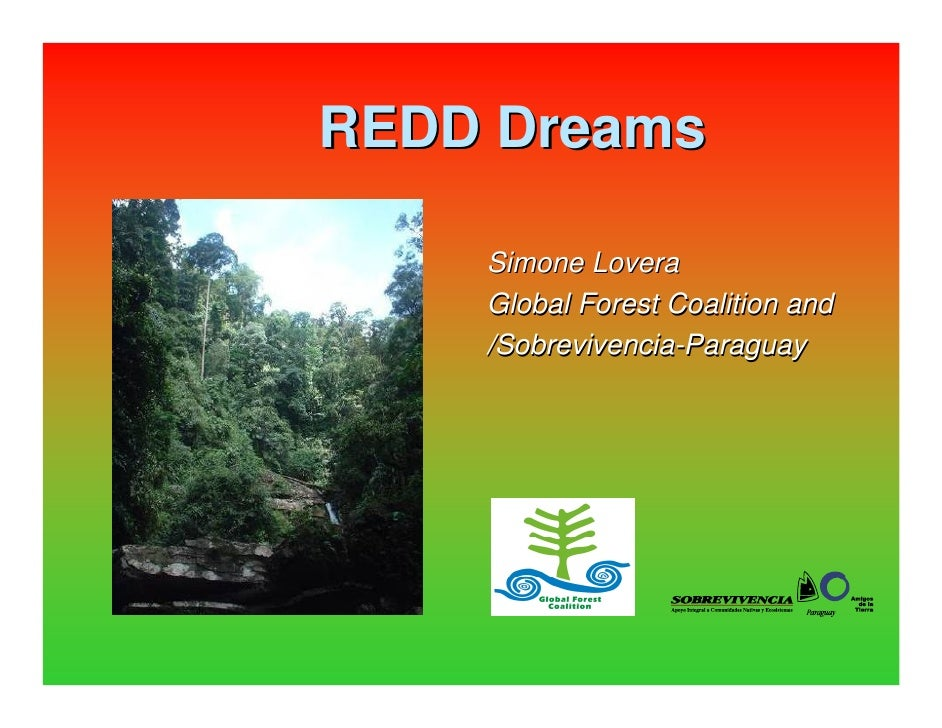 REDD Dreams      Simone Lovera     Global Forest Coalition and     /Sobrevivencia-Paraguay