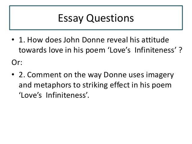 lovers infiniteness essay questions