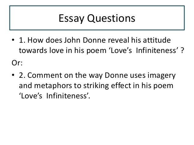 lovers infiniteness essay questions