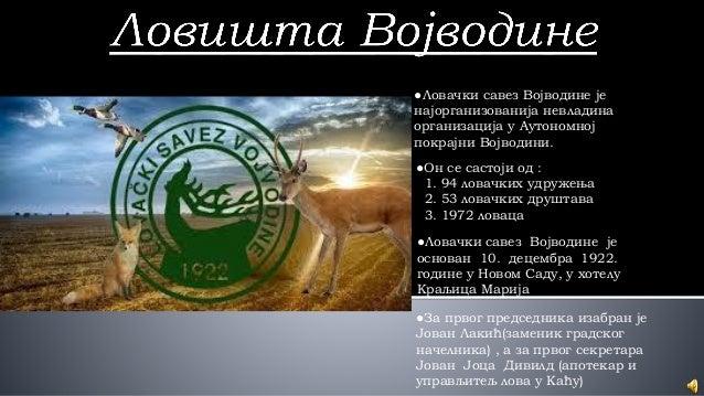●Ловачки савез Војводине је најорганизованија невладина организација у Аутономној покрајни Војводини. ●Он се састоји од : ...
