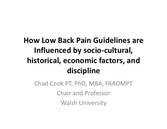 Low back pain guidelines IFOMPT 2012