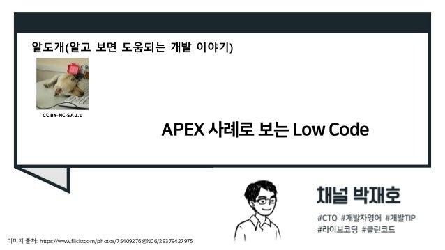 APEX 사례로 보는 Low Code 알도개(알고 보면 도움되는 개발 이야기) 이미지 출처: https://www.flickr.com/photos/75409276@N06/29379427975 CC BY-NC-SA 2.0