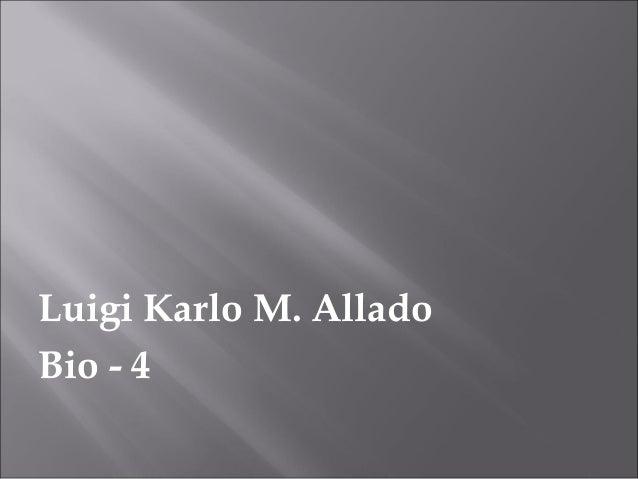 Luigi Karlo M. AlladoBio - 4
