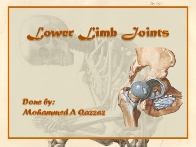 A joint is the location at which bones connect. They are constructed to allow movement (except for skull bones) and provid...