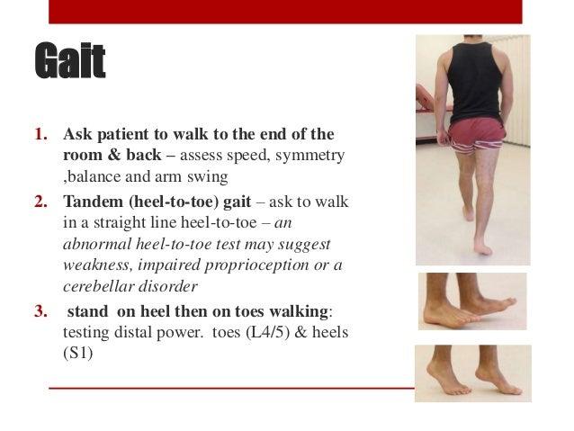 Heel To Toe Walk >> Lower limb neurological examination