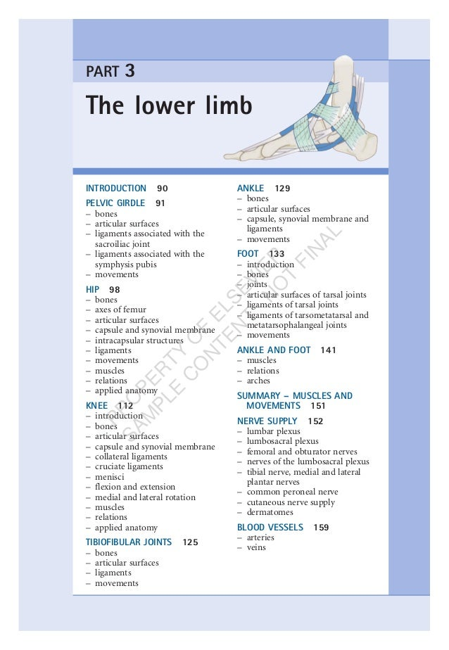 The lower limb PART 3 INTRODUCTION 90 PELVIC GIRDLE 91 – bones – articular surfaces – ligaments associated with the sacroi...