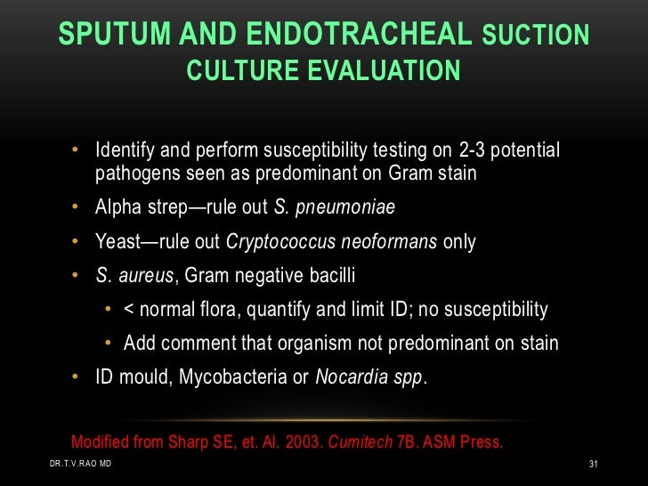SPUTUM AND ENDOTRACHEAL SUCTION                     CULTURE EVALUATION    • Identify and perform susceptibility testing on...