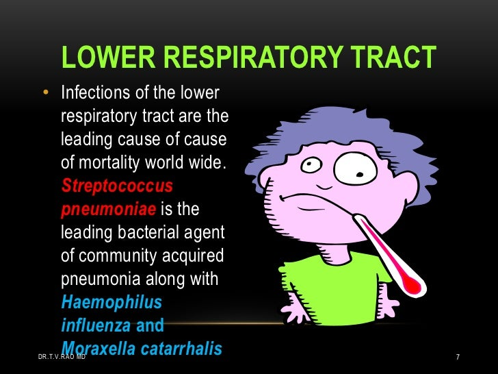 LOWER RESPIRATORY TRACT • Infections of the lower   respiratory tract are the   leading cause of cause   of mortality worl...