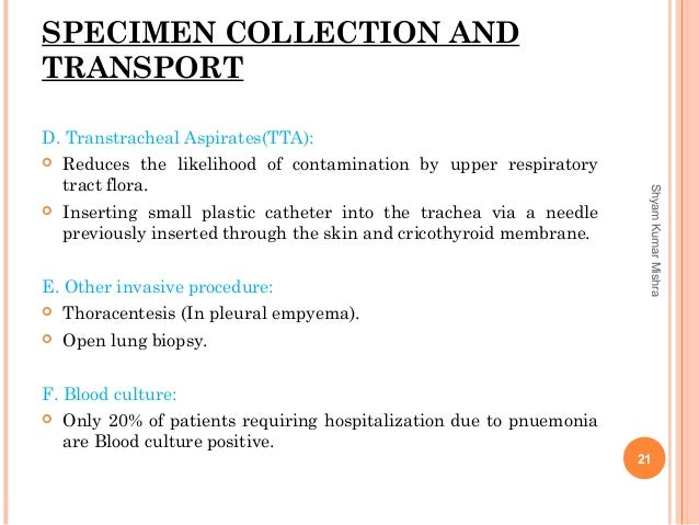 SPECIMEN COLLECTION AND TRANSPORT D. Transtracheal Aspirates(TTA):  Reduces the likelihood of contamination by upper resp...