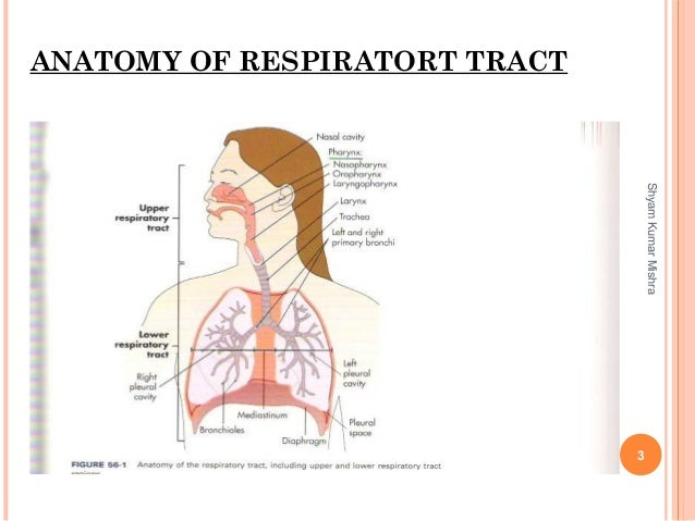 Laboratory diagnosis of Lower respiratory tract infection including t…
