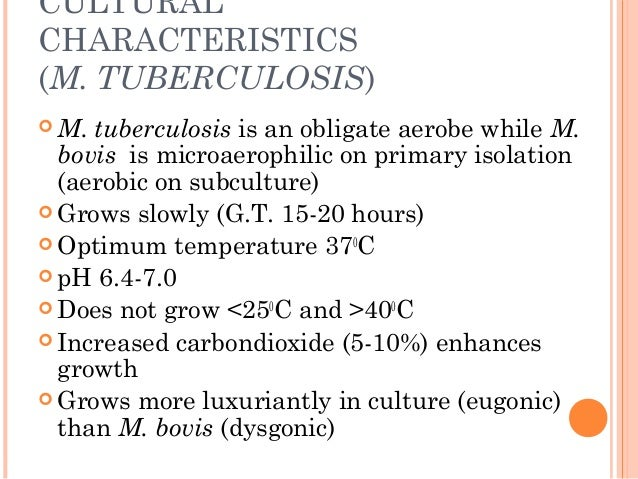 CULTURAL CHARACTERISTICS (M. TUBERCULOSIS)  M. tuberculosis is an obligate aerobe while M. bovis is microaerophilic on pr...