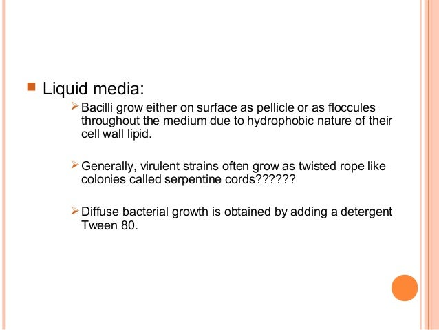  Liquid media: Bacilli grow either on surface as pellicle or as floccules throughout the medium due to hydrophobic natur...
