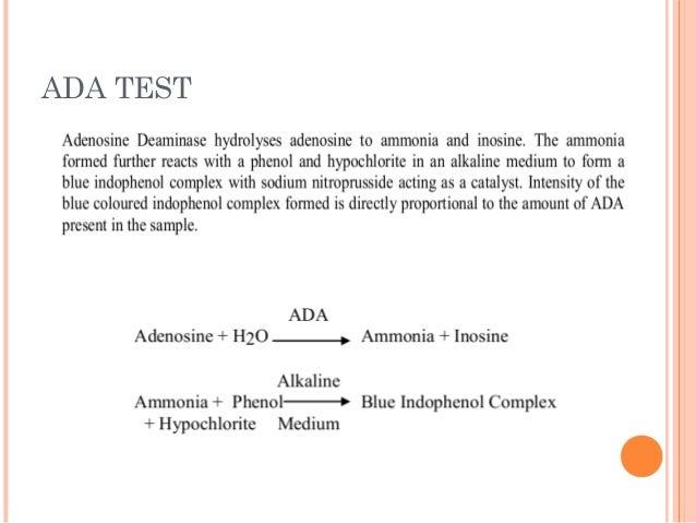 ADA TEST