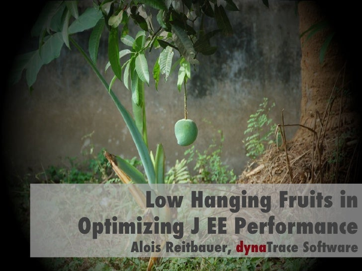 Low Hanging Fruits in Optimizing J EE Performance Alois Reitbauer,  dyna Trace Software