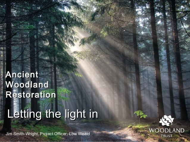 AncientAncient WoodlandWoodland RestorationRestoration Jim Smith-Wright, Project Officer, Low Weald Letting the light inLe...
