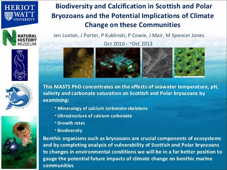Biodiversity and Calcification in Scottish and Polar   Bryozoans and the Potential Implications of Climate             Cha...