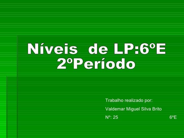 Níveis  de LP:6ºE 2ºPeríodo Trabalho realizado por: Valdemar Miguel Silva Brito Nº: 25  6ºE