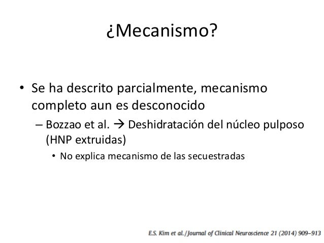 ¿Mecanismo? • Inmunohistología y procesos inflamatorios – Doita et al.  Fragmentos herniarios rodeados de neovascularizac...
