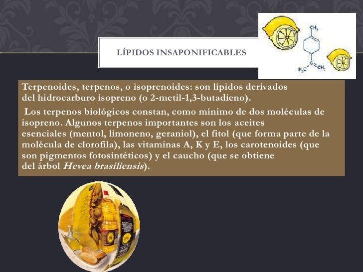 LÍPIDOS INSAPONIFICABLESTerpenoides, terpenos, o isoprenoides: son lípidos derivadosdel hidrocarburo isopreno (o 2-metil-1...