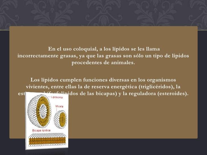 En el uso coloquial, a los lípidos se les llamaincorrectamente grasas, ya que las grasas son sólo un tipo de lípidos      ...