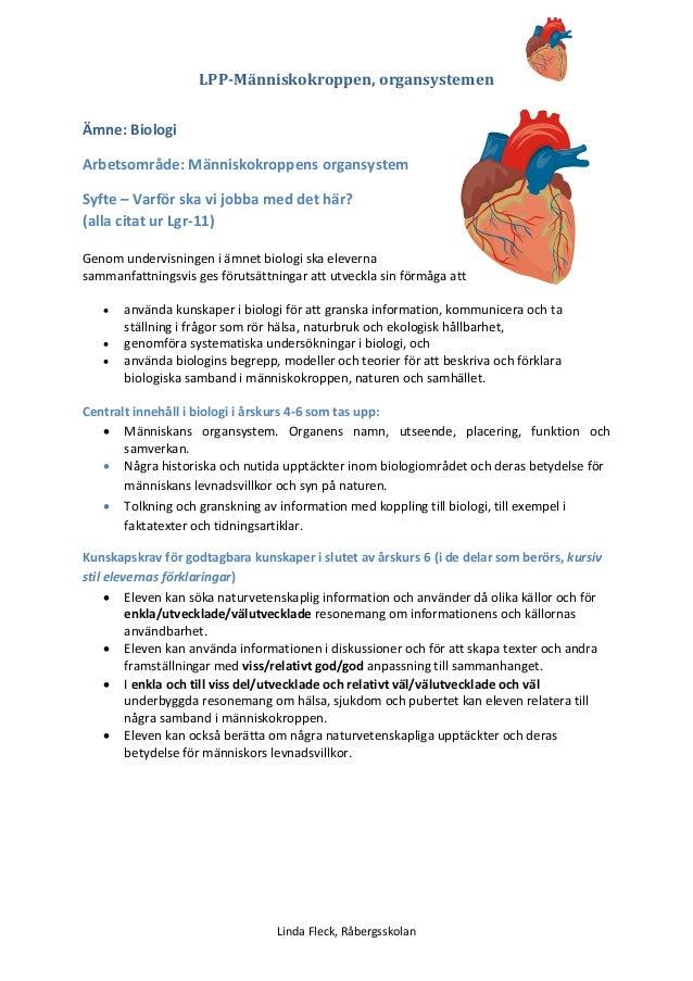 Planering människokroppen organsystem