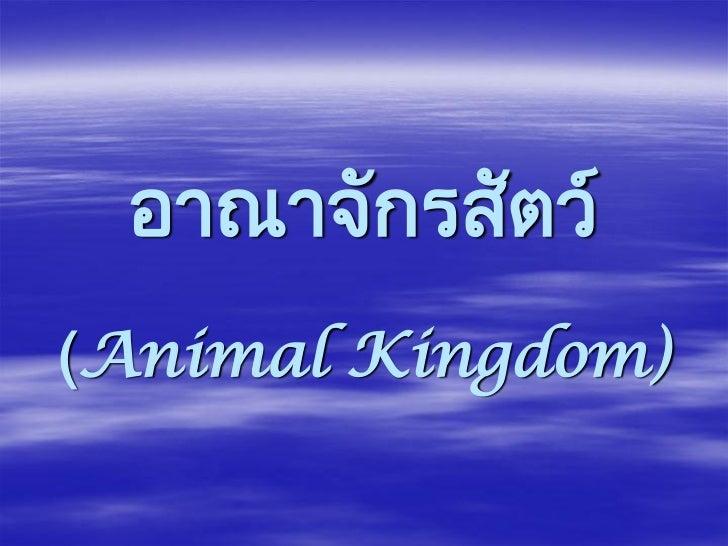 อาณาจักรสัตว์(Animal Kingdom)