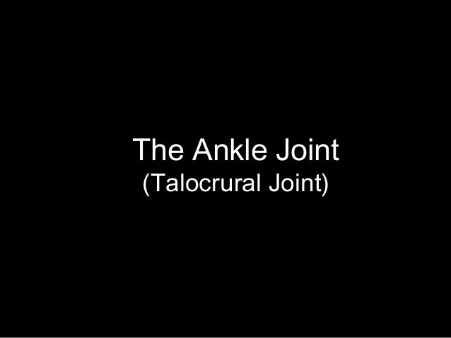 The Ankle Joint (Talocrural Joint)