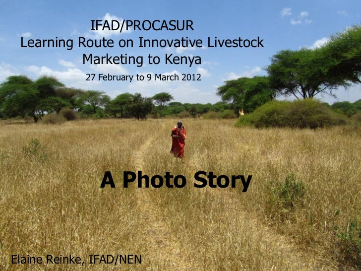 IFAD/PROCASUR Learning Route on Innovative Livestock           Marketing to Kenya             27 February to 9 March 2012 ...