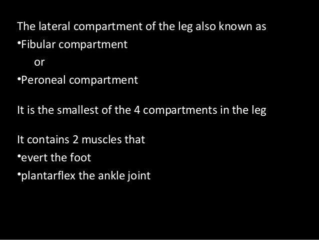 Slideshow: Lateral Leg Slide 3