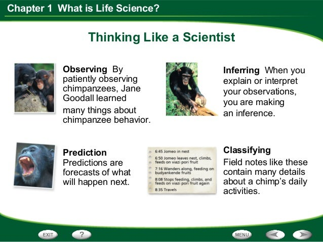 life science chapter 1 section 1 think like a scientist. Black Bedroom Furniture Sets. Home Design Ideas