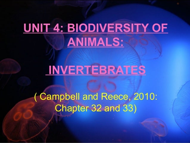 UNIT 4: BIODIVERSITY OF ANIMALS: INVERTEBRATES ( Campbell and Reece, 2010: Chapter 32 and 33)