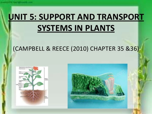 UNIT 5: SUPPORT AND TRANSPORTSYSTEMS IN PLANTS(CAMPBELL & REECE (2010) CHAPTER 35 &36)