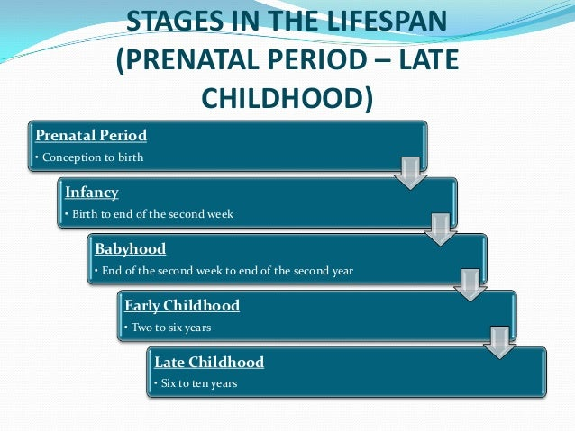 stages of human development early childhood A child's exposure to positive socialization and the success of child developmental stages and is what the development of an individual depends on the following will present the relationship between human development and socialization.