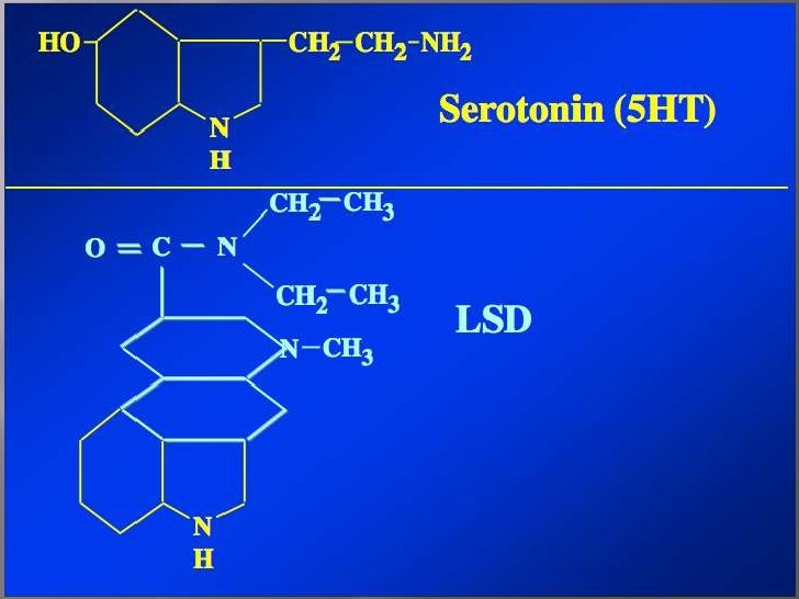 """lsd presentation Lysergic acid diethylamide (lsd), commonly referred to as """"acid"""", is a synthetic hallucinogen lsd is very potent, only microgram amounts are required to ."""