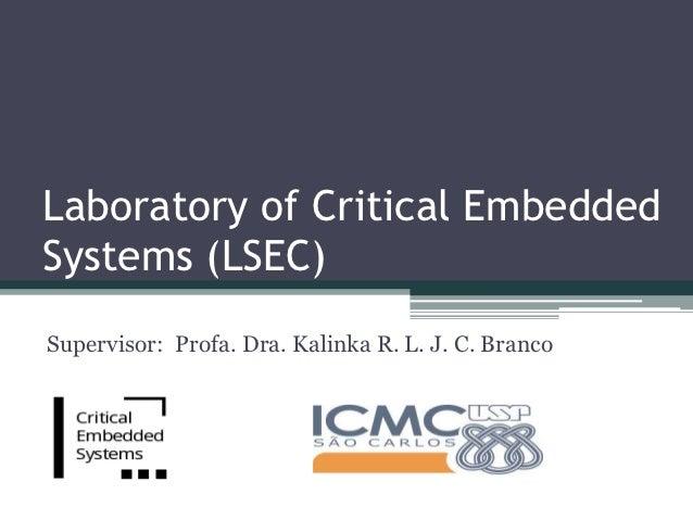 Laboratory of Critical EmbeddedSystems (LSEC)Supervisor: Profa. Dra. Kalinka R. L. J. C. Branco